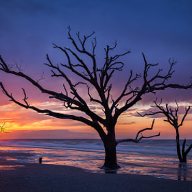 Botany Bay Sunrise  by Sarah Marino (SarahMarino)) on 500px.com