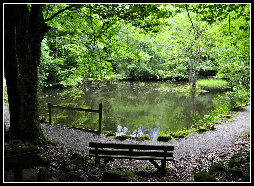 Photograph Empty bench by mc rr on 500px