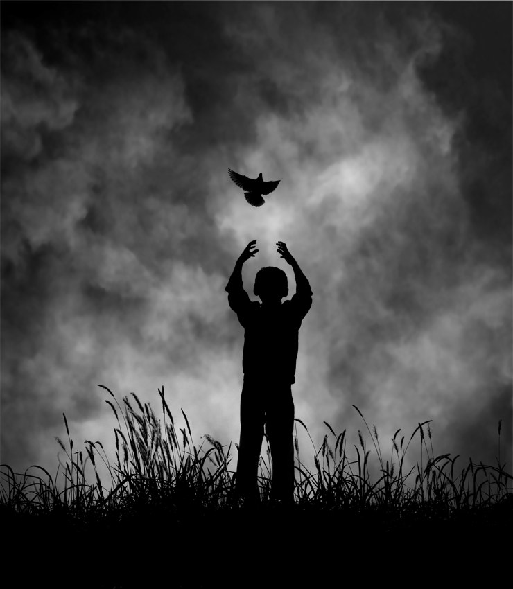 Photograph The Flight Of Dreams by Hengki Lee on 500px