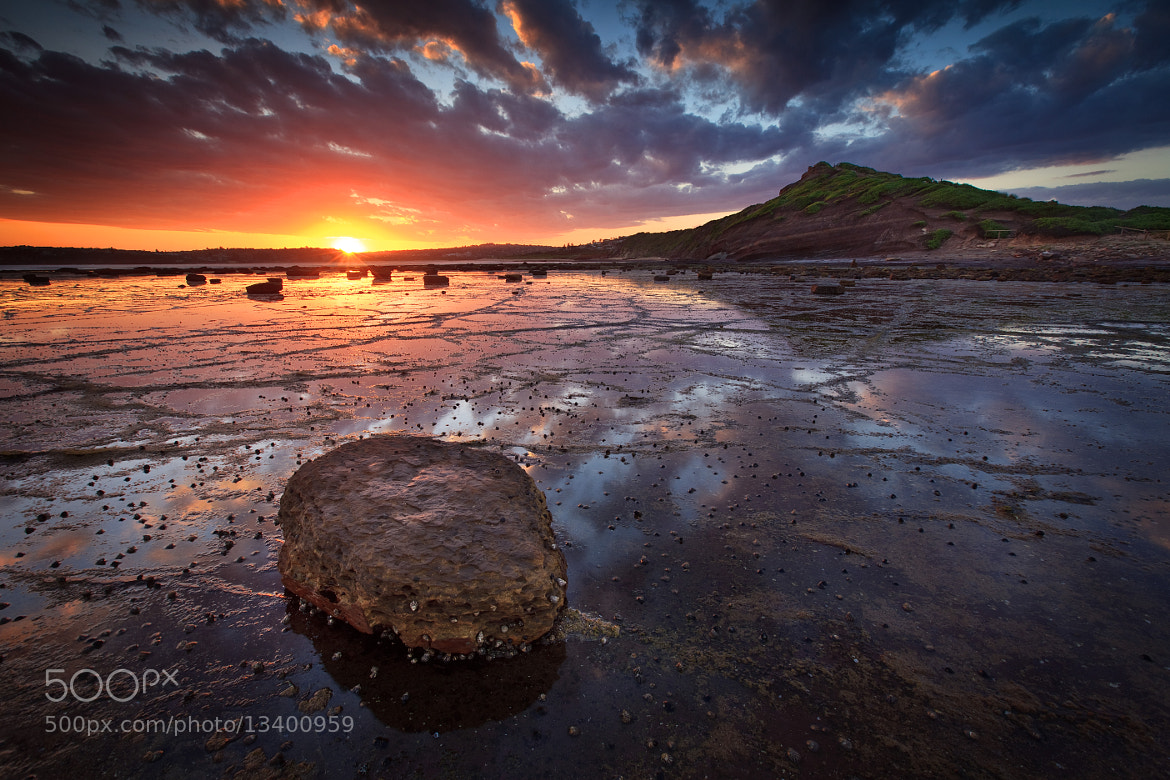 Photograph Summer Sunset over Long Reef by Xenedis  on 500px