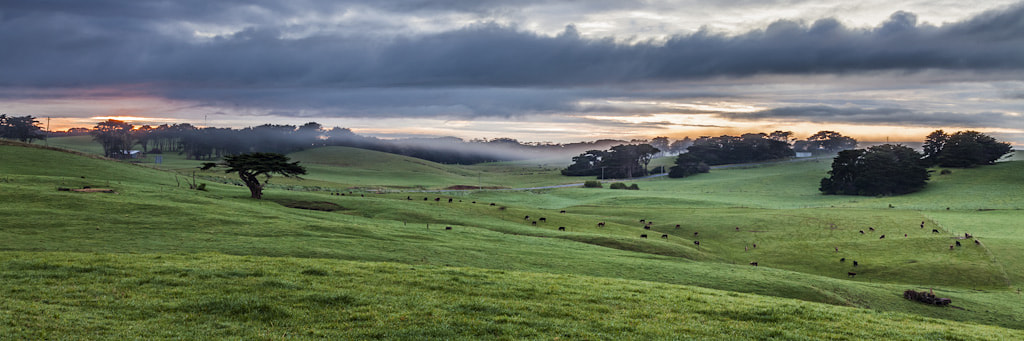 Photograph Foggy Farmscape by Martin Canning on 500px