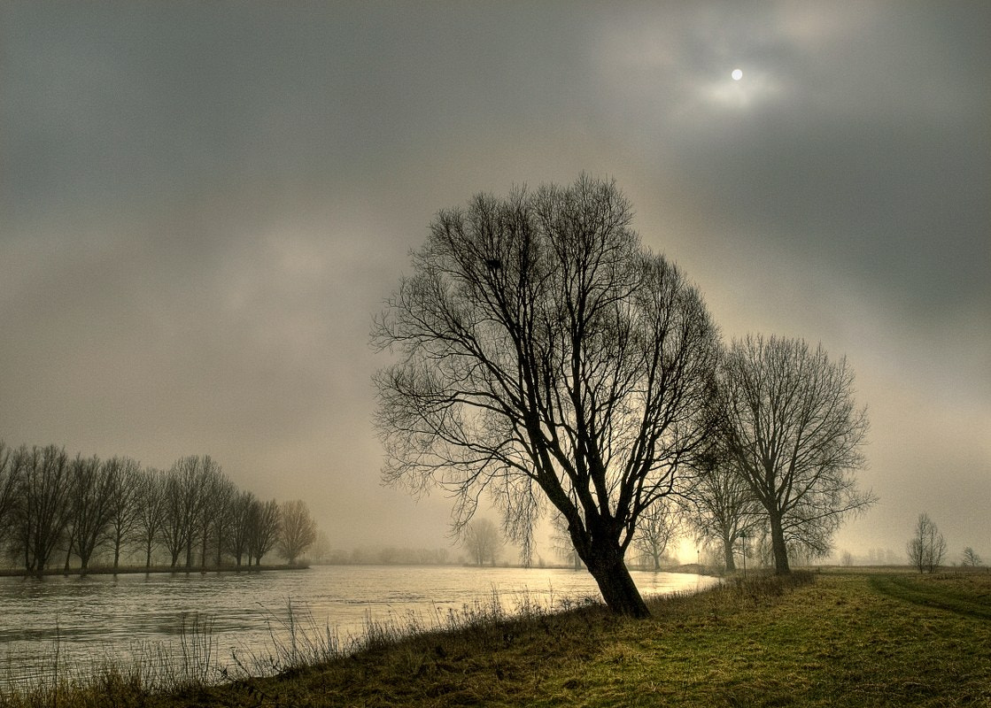 Photograph A misty day  by Nico van Gelder on 500px