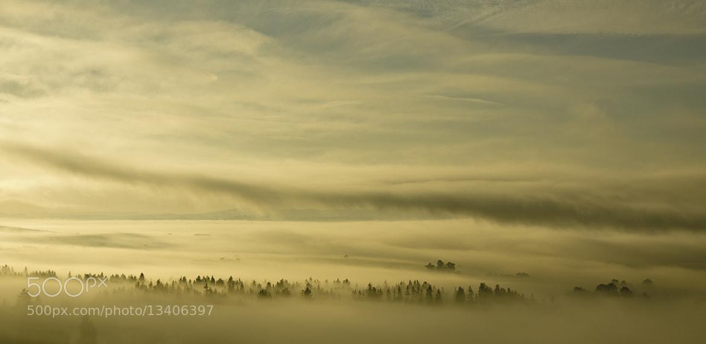 Photograph Fog by pawel kowynia on 500px