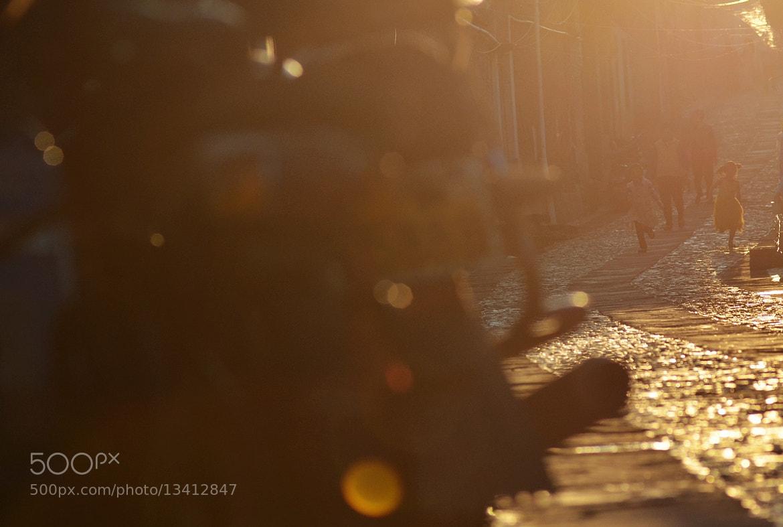 Photograph Shine by 五十万加仑 WU on 500px