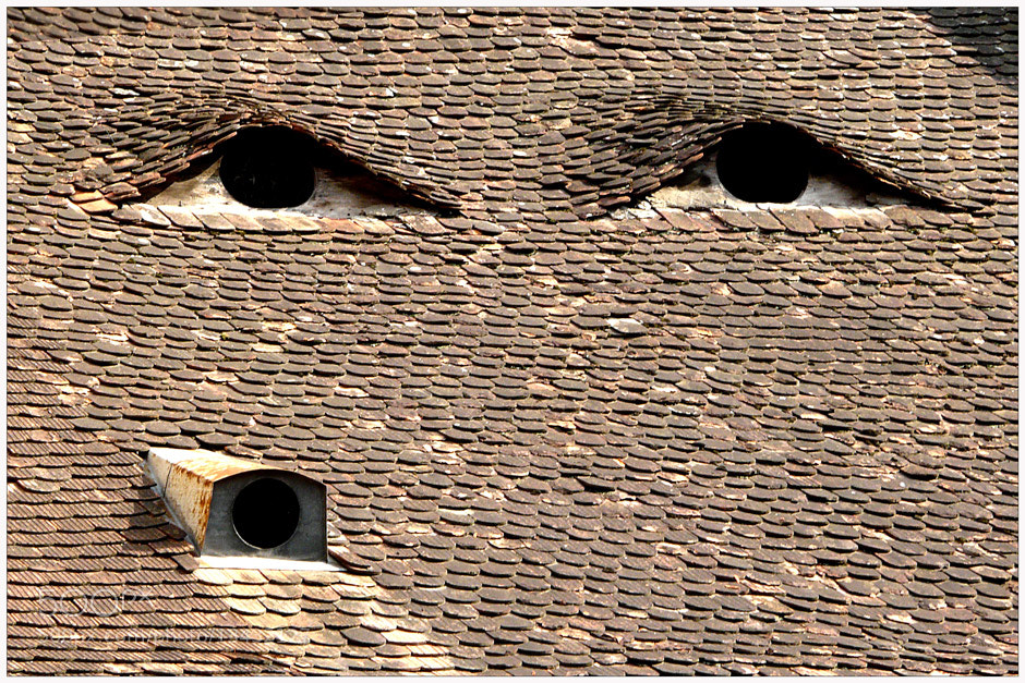 Photograph Eyes house by Stefan Andronache on 500px