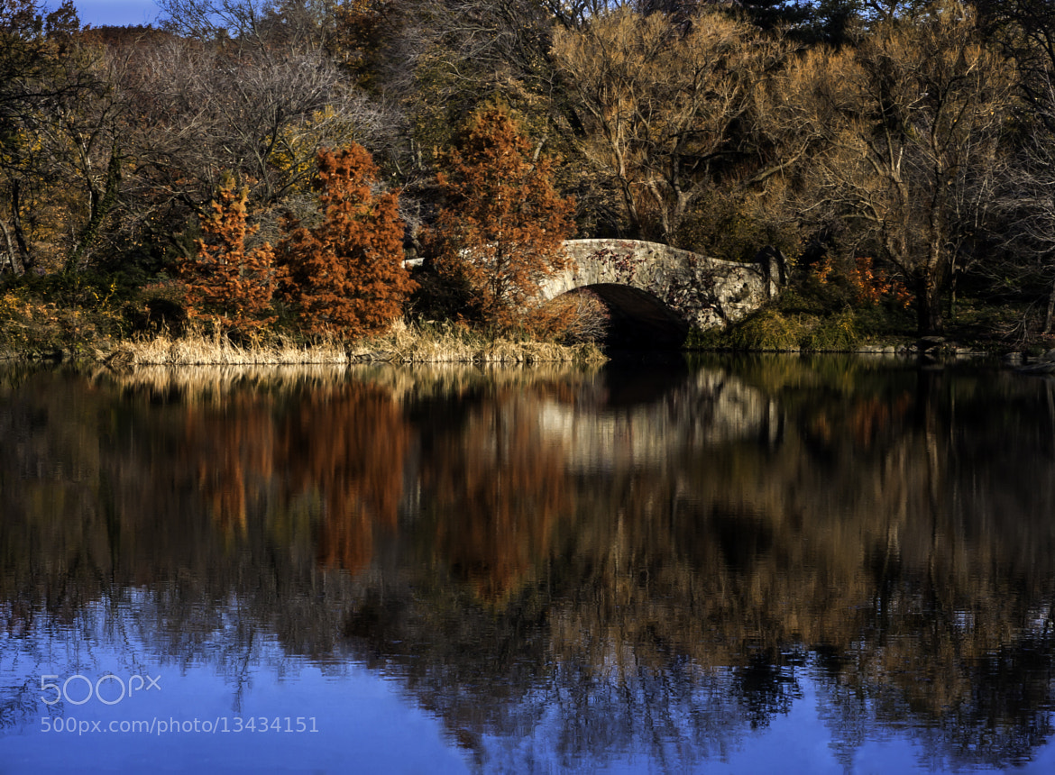 Photograph Gapstow Bridge in Fall by Ronald Diel on 500px