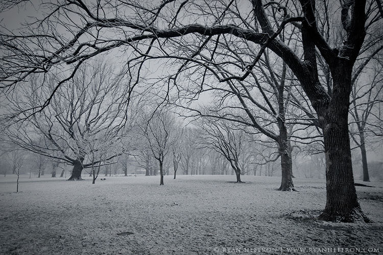 Photograph Haze by Ryan Heffron on 500px