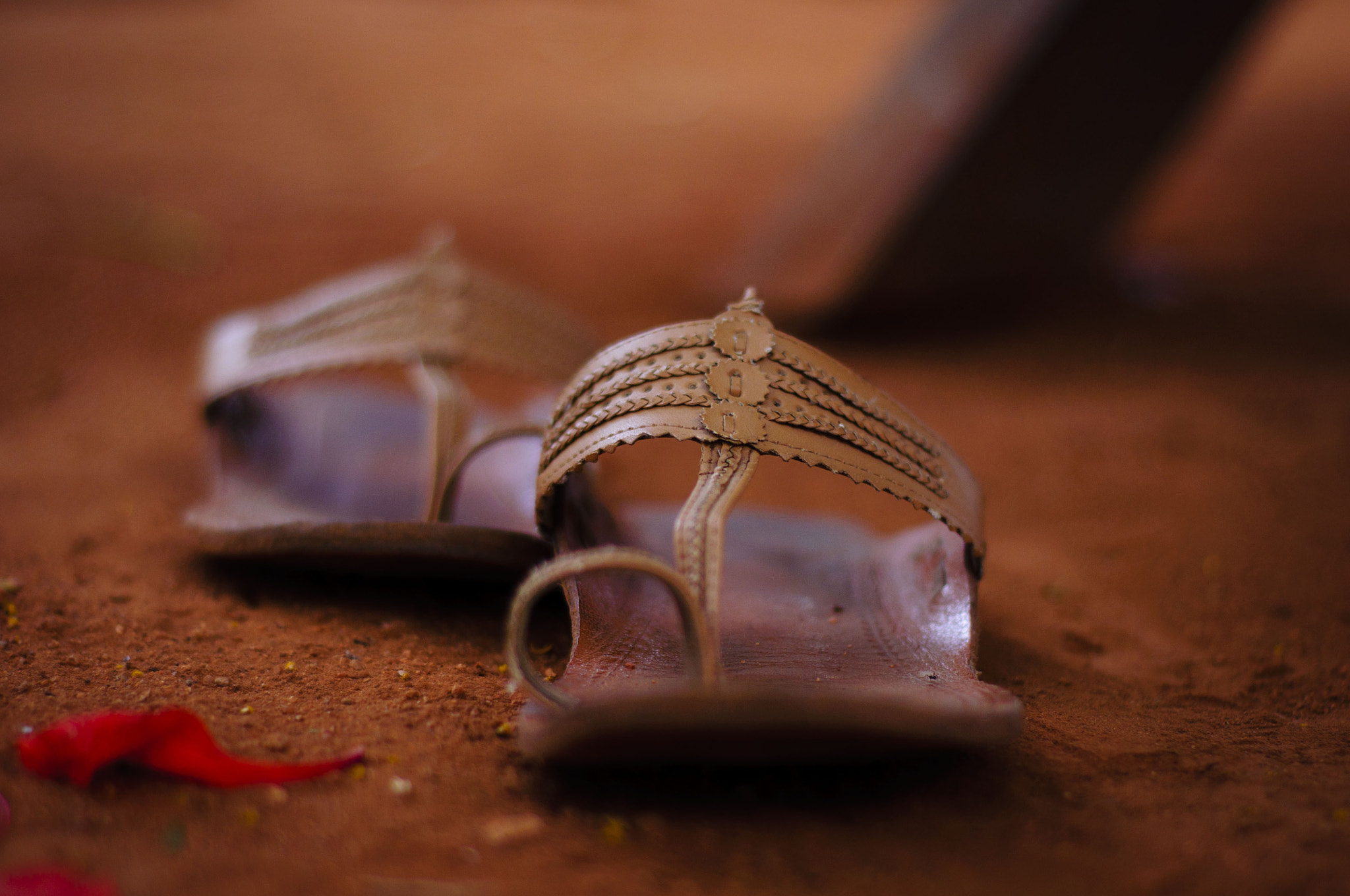 Photograph Footsteps by Suravi Shome on 500px