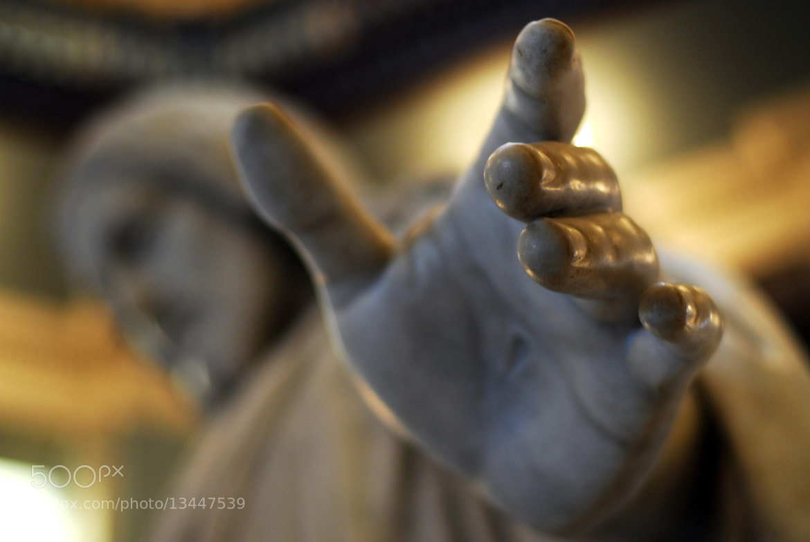 Photograph The hand by Robert Kusztos on 500px