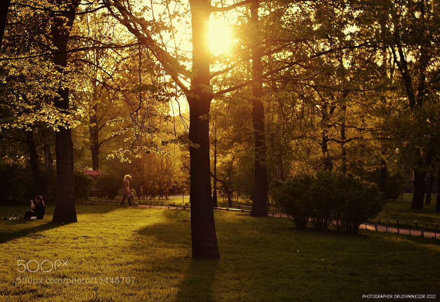 Photograph park  by Egor Druzhinin on 500px