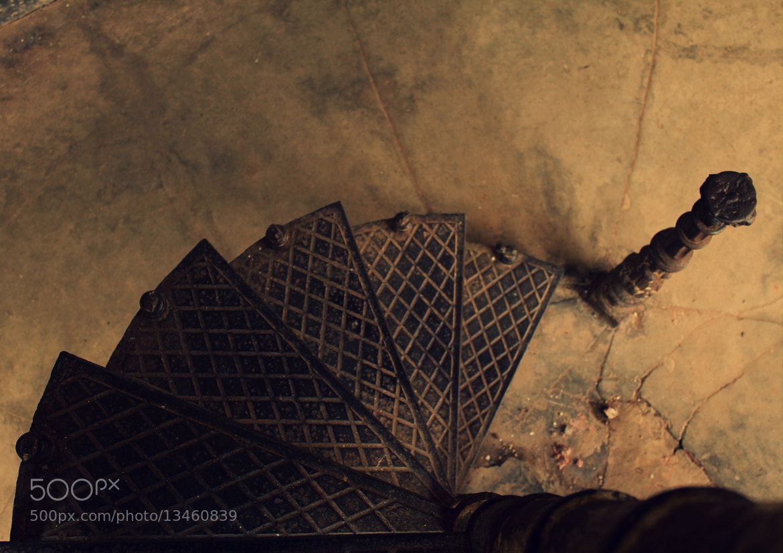 Photograph Untitled by ZAHIDUR RAHMAN on 500px
