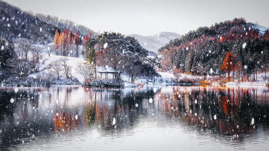 Winter Wonderland by Tony Lee on 500px.com