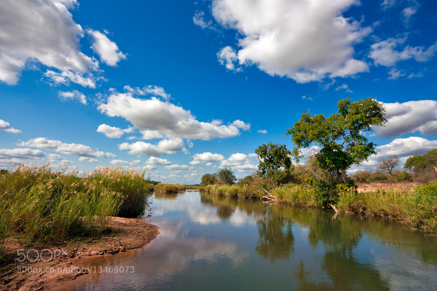 Photograph Kruger Landscape by Nicolas Raymond on 500px