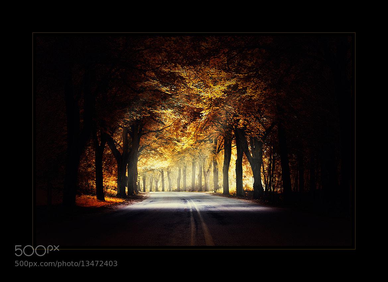 Photograph around the bend... by Marek Czaja on 500px