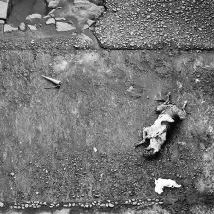 Death ain't that kind..., Sony DSC-S80