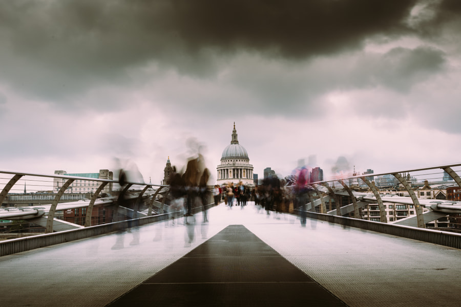 Dead or Alive by Mark  Cornick  on 500px.com