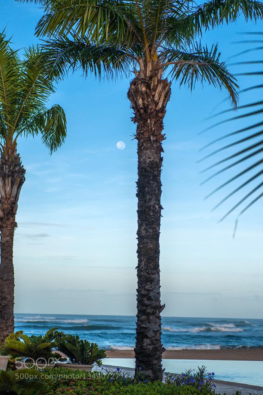 Photograph Moon over Mansita Beach by Sergio Quesada on 500px