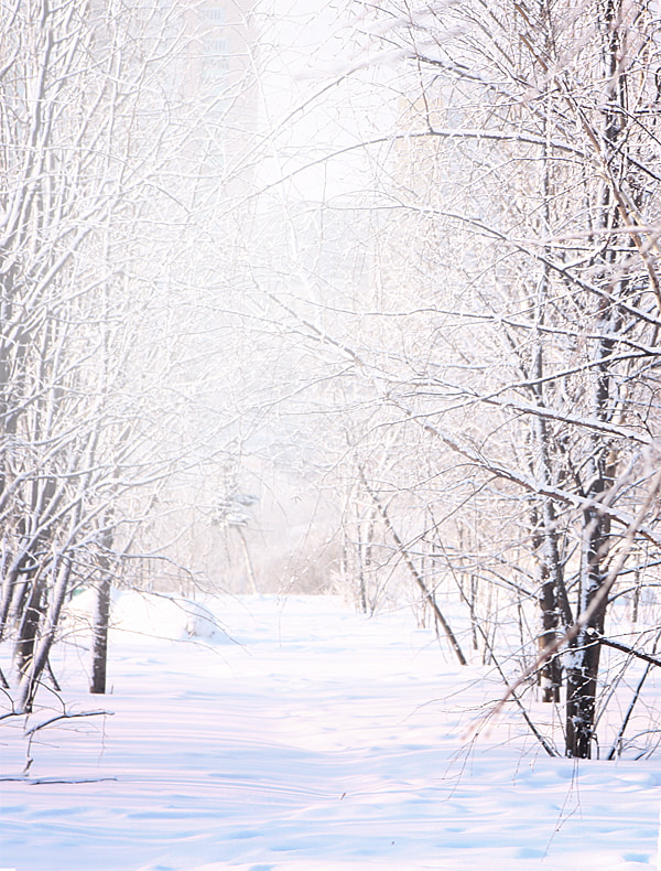 Photograph breathe the winter by Anastasia Mamina on 500px