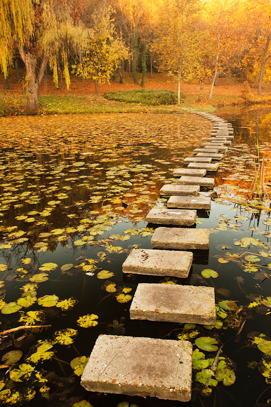 Photograph Steps In the Lake by Evgeni Dinev on 500px