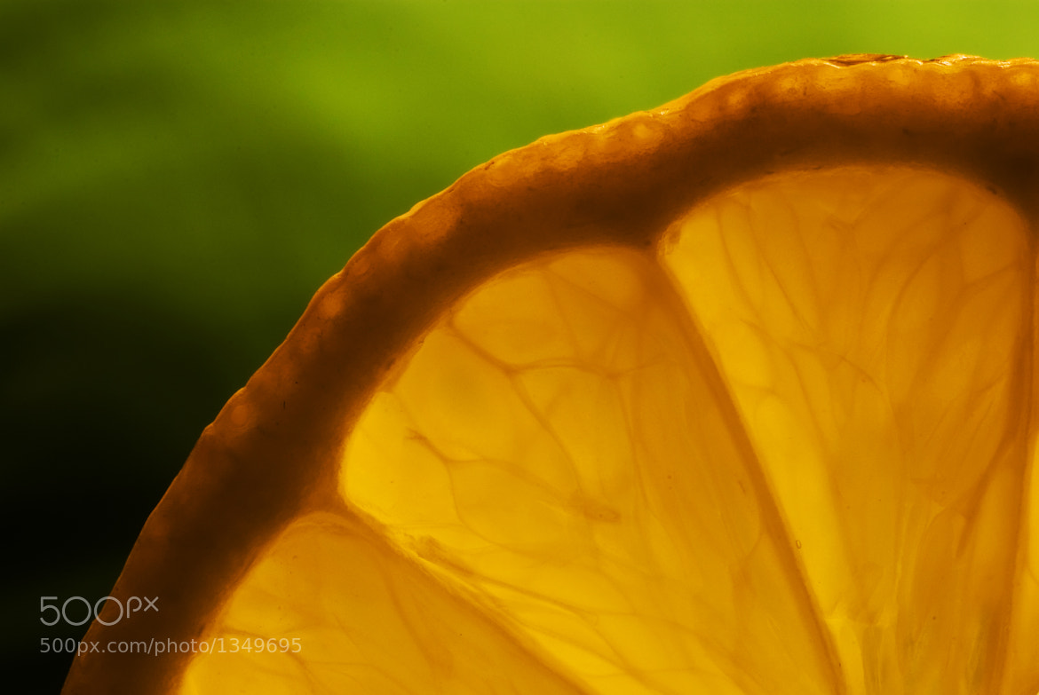 Photograph Lemon by Andrew Macpherson on 500px