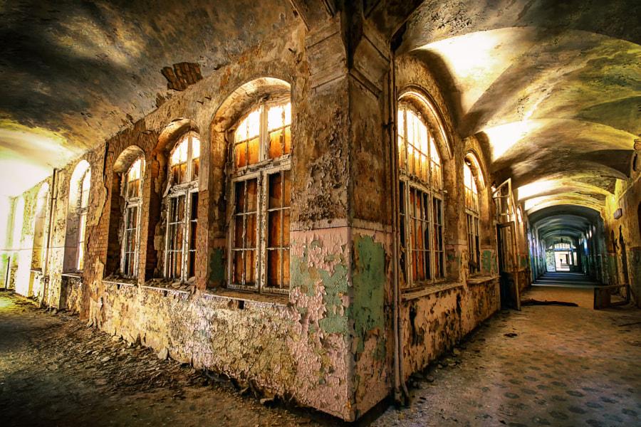 Beelitz Floors