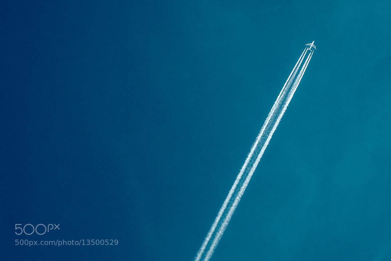 Photograph Flying high by Oleg Gutsol on 500px