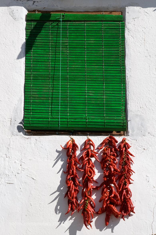 Photograph Pimientos de Yegen by Andrew Macpherson on 500px