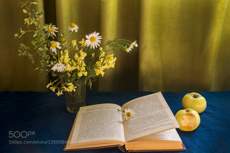 Photograph Summer  fiction by Oksana Bratanova on 500px