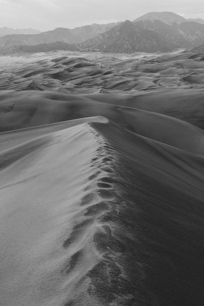 Photograph View from High Dune by Wouter J on 500px