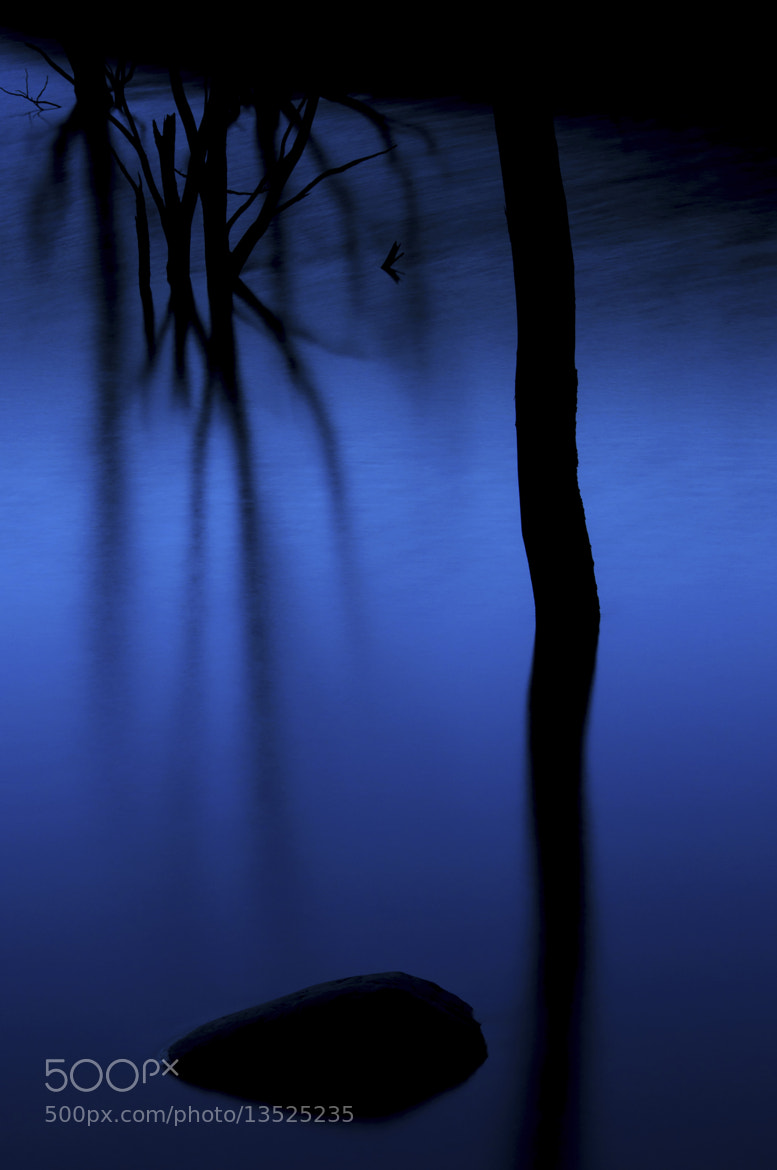 Photograph Bleu & Black by Damien Le Prieur on 500px