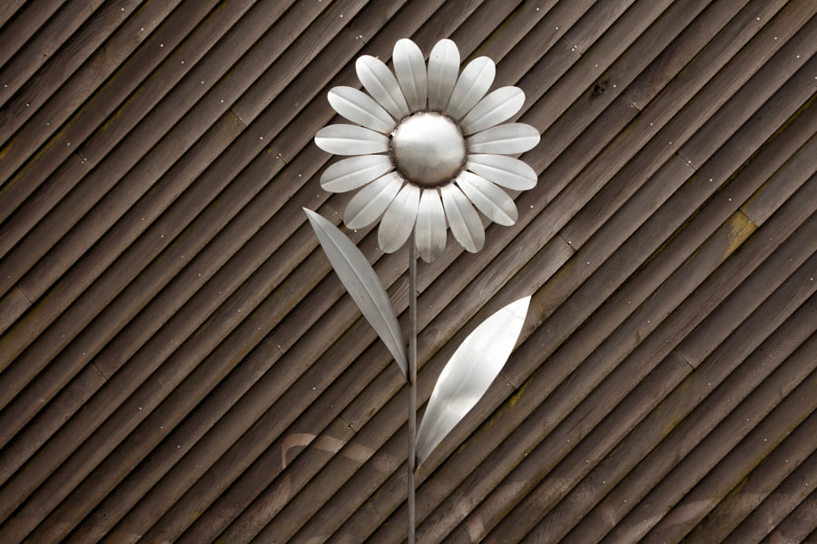 Falkirk Wheel flower art
