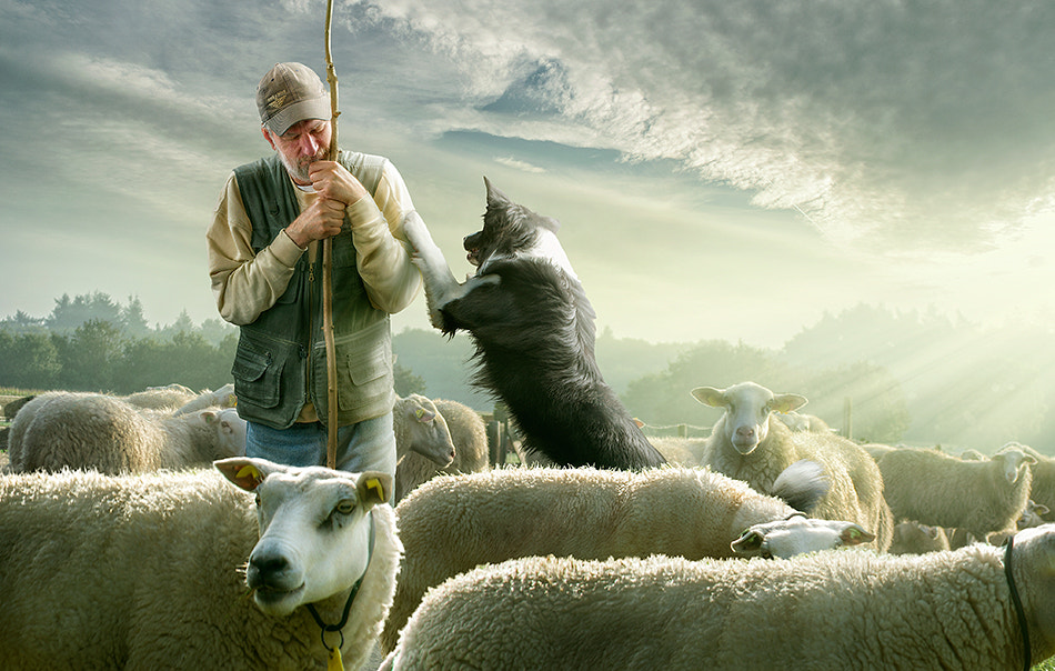 Photograph counting sheepzzzZZZzzz by Adrian Sommeling on 500px