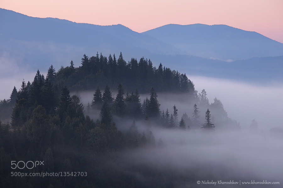 Photograph Foggy sunrise in Carpathian mountains by Nickolay Khoroshkov on 500px