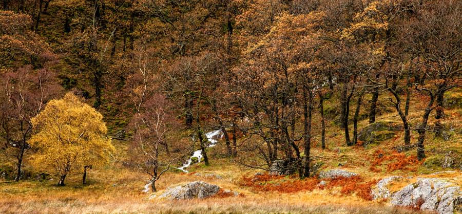 Watendlath Autumn colours