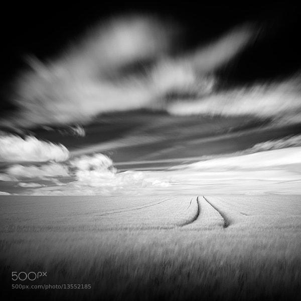 Photograph Trace dans le blé by Emmanuel Correia on 500px