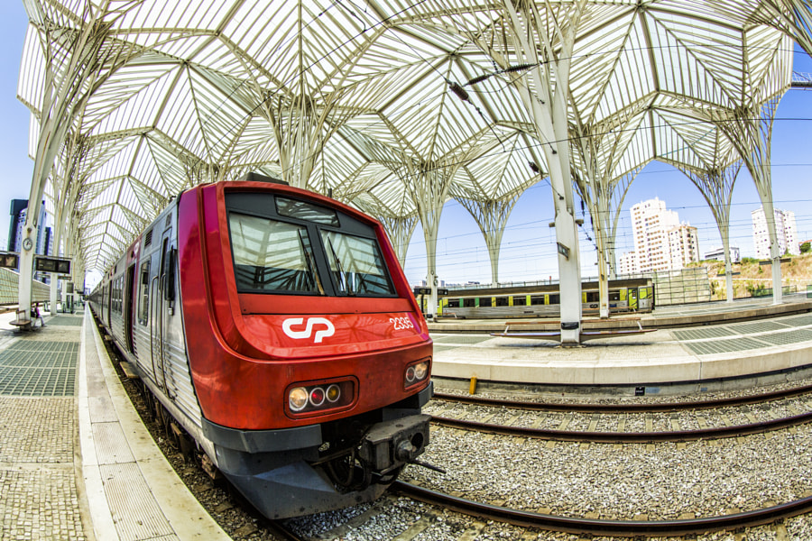 Train at Oriente Station
