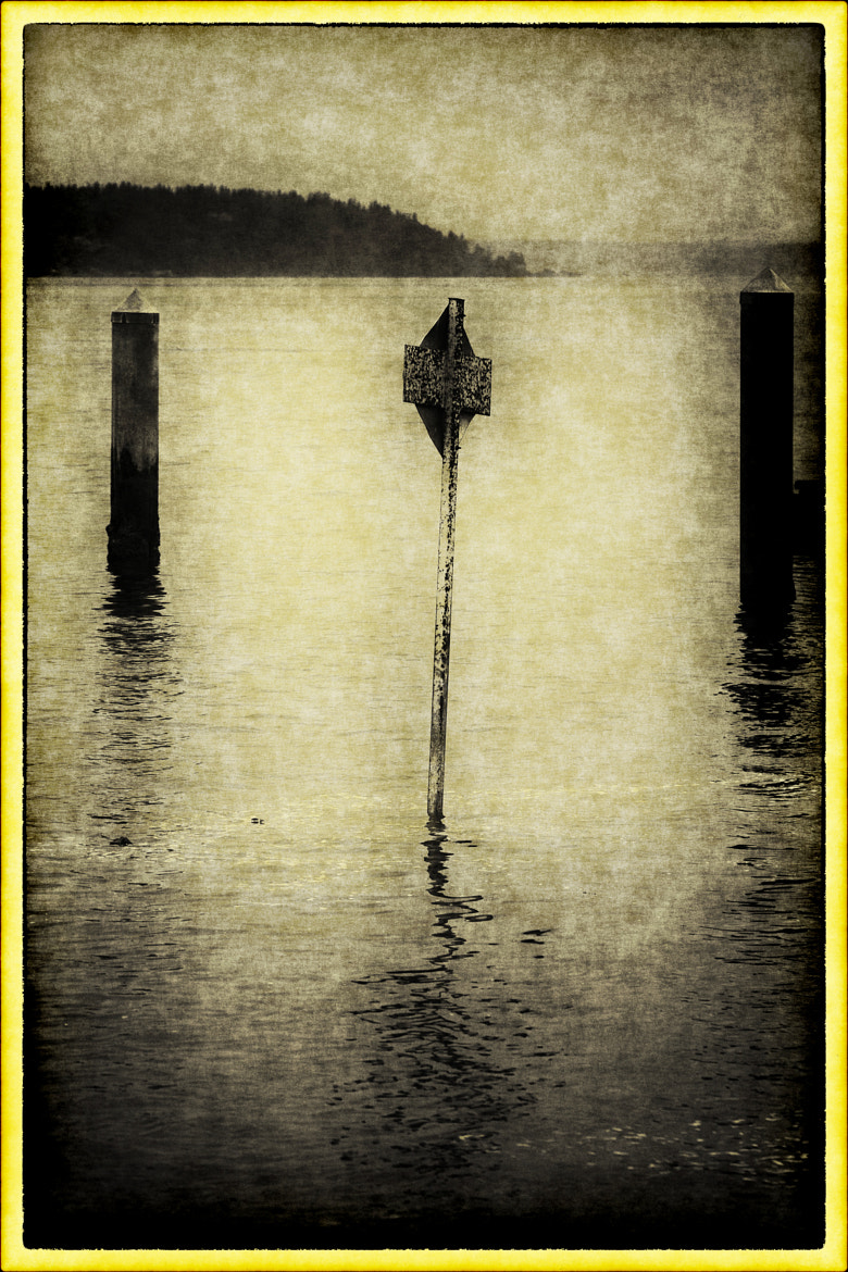 Photograph An old sign in the bay by Kevin Rank on 500px