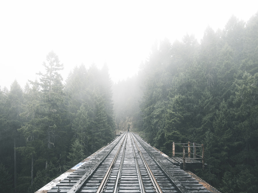 Unclear by Nicholas Yee on 500px.com