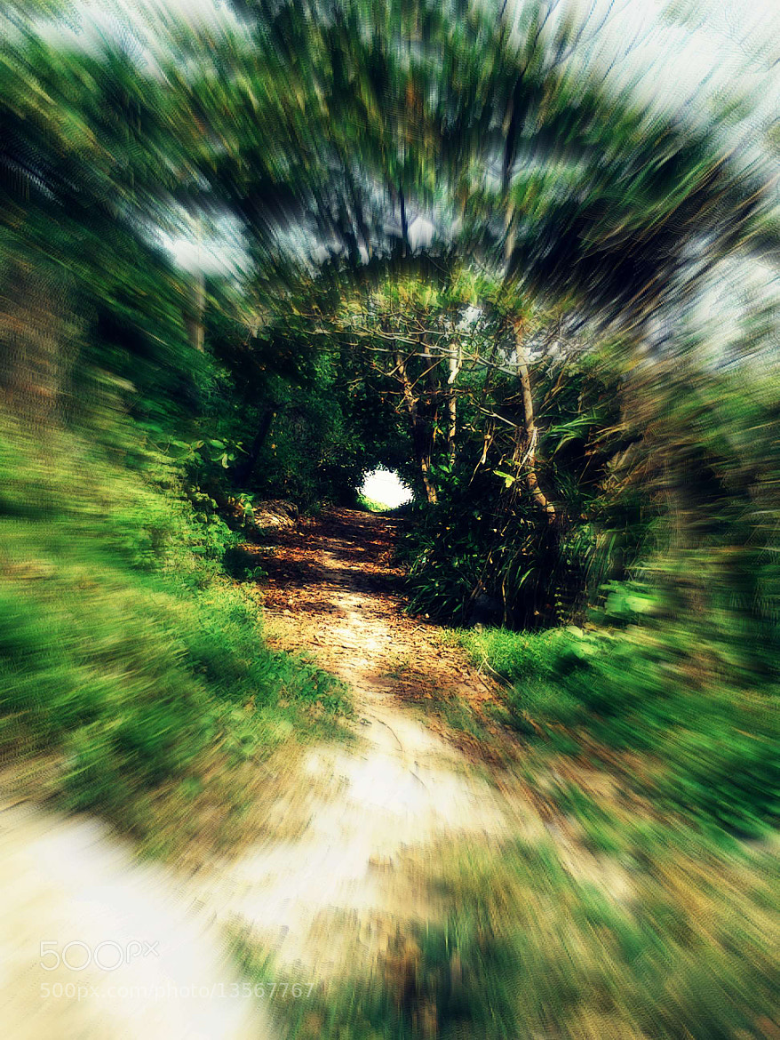 Photograph Into The Rabbit Hole by Tanuj Rohatgi on 500px