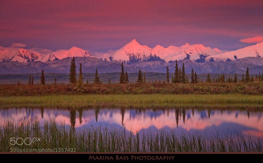 Photograph Sunset over Alaska Range by Marina Bass on 500px