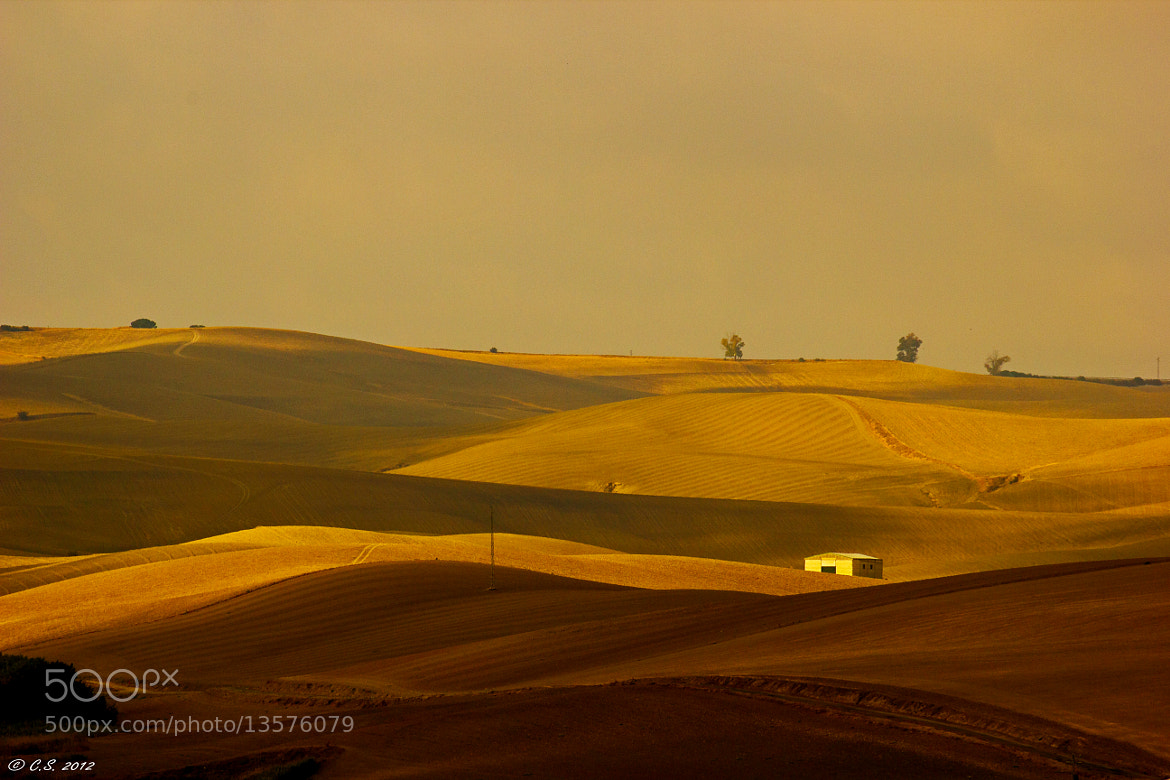 Photograph Landscape Of Andalusia by Christian Seiffert on 500px