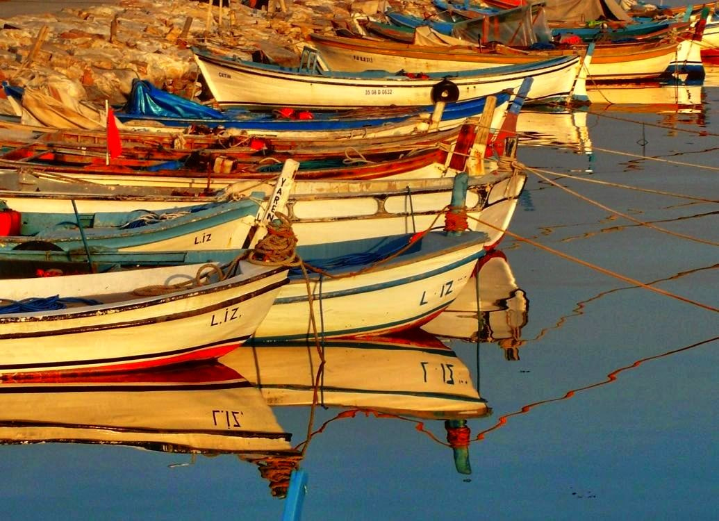 Photograph Lovely colours. by Metin Canbalaban on 500px