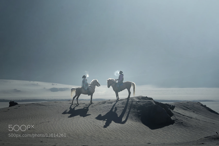 Photograph horses rider by JD Ardiansyah on 500px