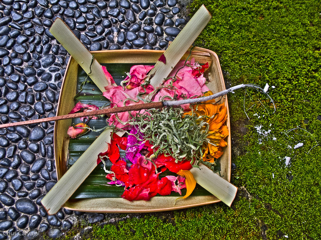 Photograph Ofrenda by CHUS CARVAJAL on 500px