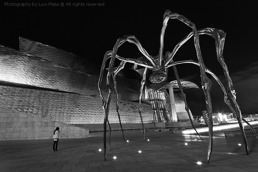 Photograph The spider and the little girl by Luis Mata on 500px
