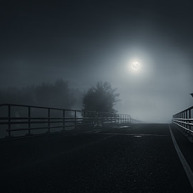 The crow by Mikko Lagerstedt