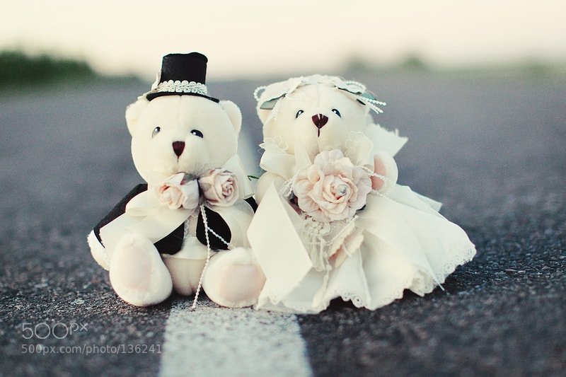 Photograph Plush lovers by Kristina Kazarina on 500px