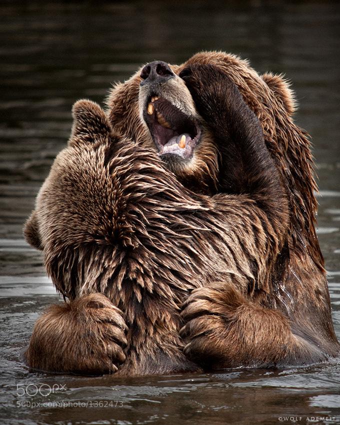 10 bear hug