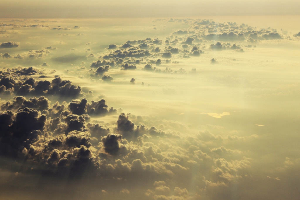 Photograph AIR KINGDOM by Antonina Milay on 500px