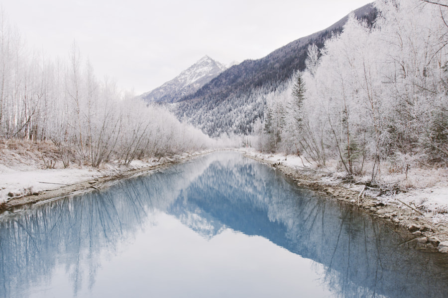 Winter in Alaska by Alex Strohl on 500px.com